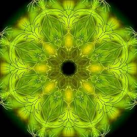 Michael African Visions - Green and Leafy Mandala