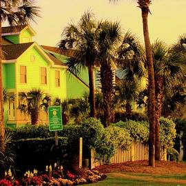 Kendall Kessler - Green Beauty at Isle of Palms
