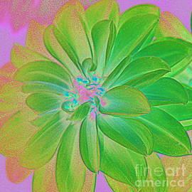 Photographic Art and Design by Dora Sofia Caputo - Green Dahlia Pop Art
