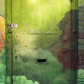Anahi DeCanio - ArtyZen Studios - Green Door - Brooklyn Graffiti Door