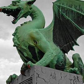 Aleksandar Hajdukovic - Green dragon in Ljubljana