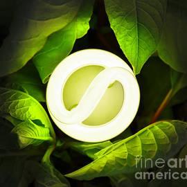 Brandon Alms - Green Energy
