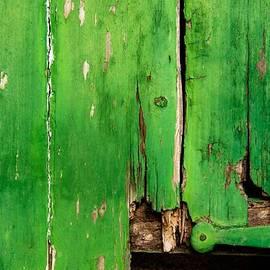 Alicia Garcia Monedero - Green good