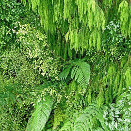 Jean Hall - Green Green