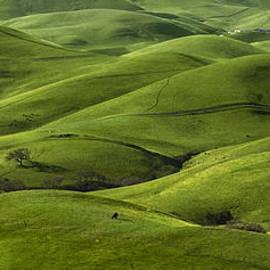 Radek Hofman - Green Hills