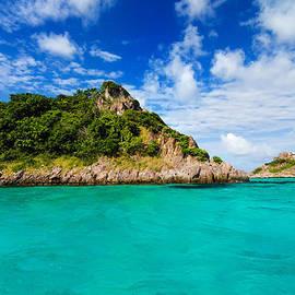 Jess Kraft - Green Island in Turquoise Water