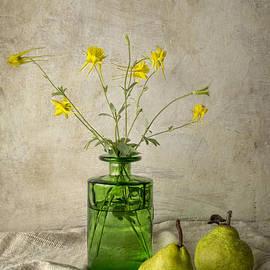 Elena Nosyreva - Green pears