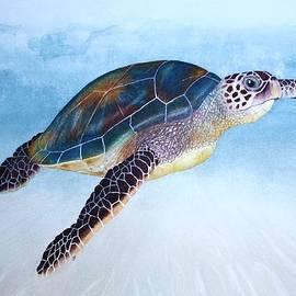 Jeff Lucas - Green Sea Turtle II