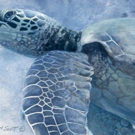 Randall Scott - Green Sea Turtle
