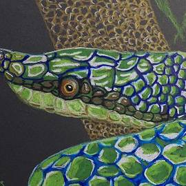 Richard Goohs - Green Tree Snake