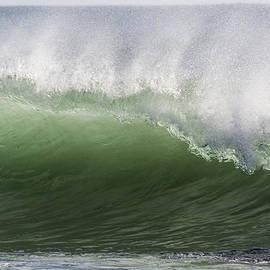 Bruce Frye - Green Wave