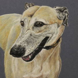 Jeanne Fischer - Greyhound
