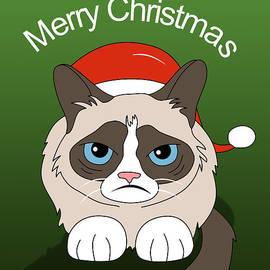 Mark Ashkenazi - Grumpy Cat