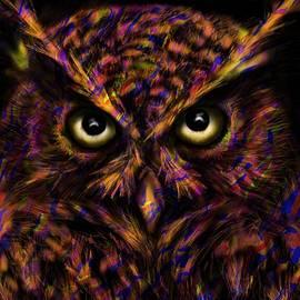 Lindsey Moulton - Grumpy Owl