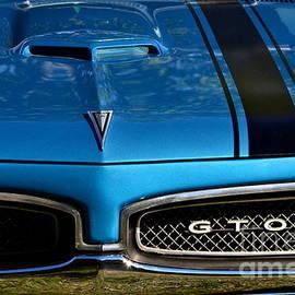 Dean Ferreira - GTO in Blue