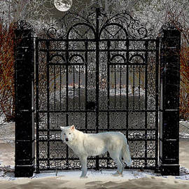 Michael Rucker - Guardian of the Gate