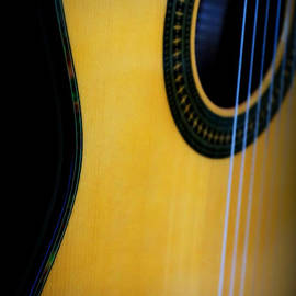 Laurie Pike - Guitar Close Up