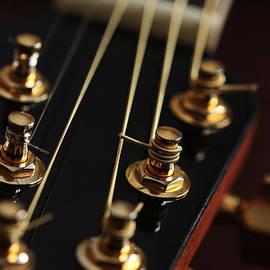 Karol  Livote - Guitar Head