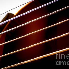 VistoOnce Photography - Guitar Strings