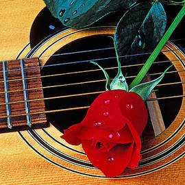 Garry Gay - Guitar with single red rose