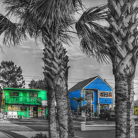 Hanny Heim - Gulf Boulevard Mono