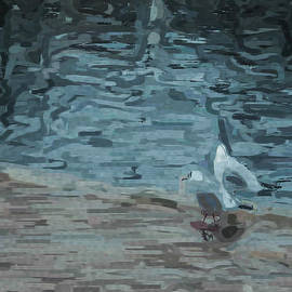 Martin Wall - Gulls Abstract