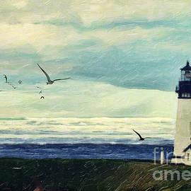 Lianne Schneider - Gulls Way