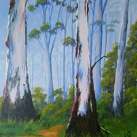 Anne Gardner - Gum trees
