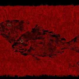 Gyotaku Scup Series 2  Red Unryu Paper
