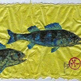 Gyotaku - Yellow Perch - Bluefish