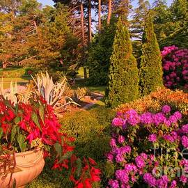 John Malone - Halifax Public Gardens