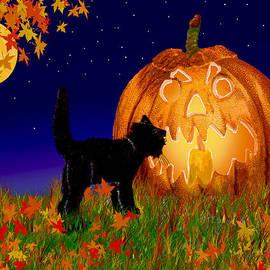 Michele  Avanti - Halloween Black Cat Meets The Giant Pumpkin