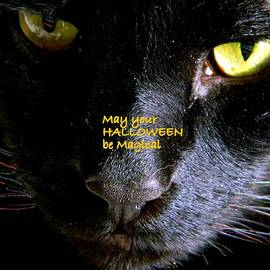 Kathy Barney - Halloween Cat