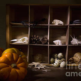 Ann Garrett - Halloween Collection With Candle