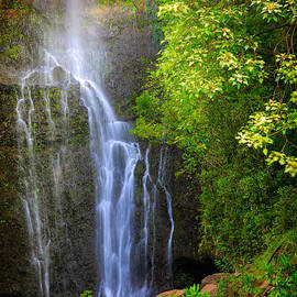 Inge Johnsson - Hana Waterfall