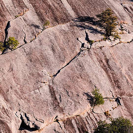 Silvio Ligutti - Hanging on to Dear Life - Enchanted Rock State Natural Area - Fredericksburg  Llano