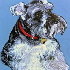 Bob and Nadine Johnston - Hans The Schnauzer Portrait