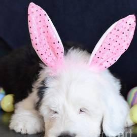 Kathleen Struckle - Happy Easter