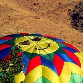 Bobbee Rickard - Happy Face Balloon