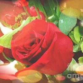 Rose Wang - Happy valentine