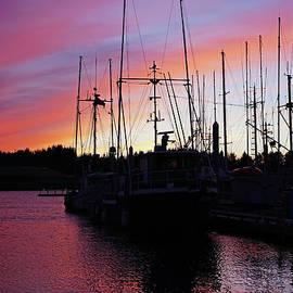 Thierry Borcy - Harbor Sunset