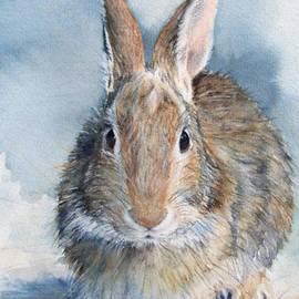 Patricia Henderson - Hare