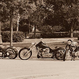 Laura Fasulo - Harley Line up