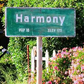 Tap  On Photo - Harmony Town Sign