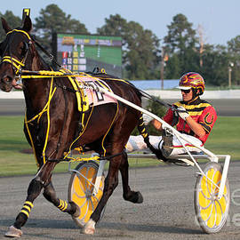 Dwight Cook - Harness Racing 4