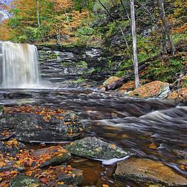 Marcia Colelli - Harrison Wrights Waterfall