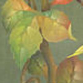 Doreta Y Boyd - Harvest Grapevine