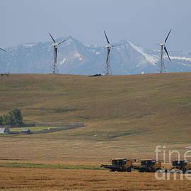 Ann E  Robson - Harvesting Wind and Grain
