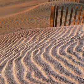 Steven Ainsworth - Hatteras Dunes