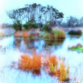 Dan Carmichael - Hatteras Wetlands on the Outer Banks